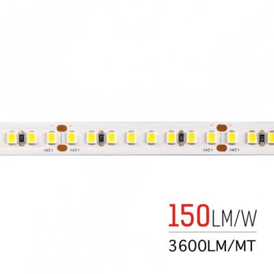 STRIP LED HE800130 26W/MT 150LM/W 24V IP20 5000K