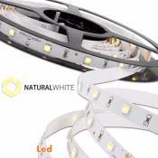 STRIP LED 300SMD5050 BIANCO NATURALE IP65 24V